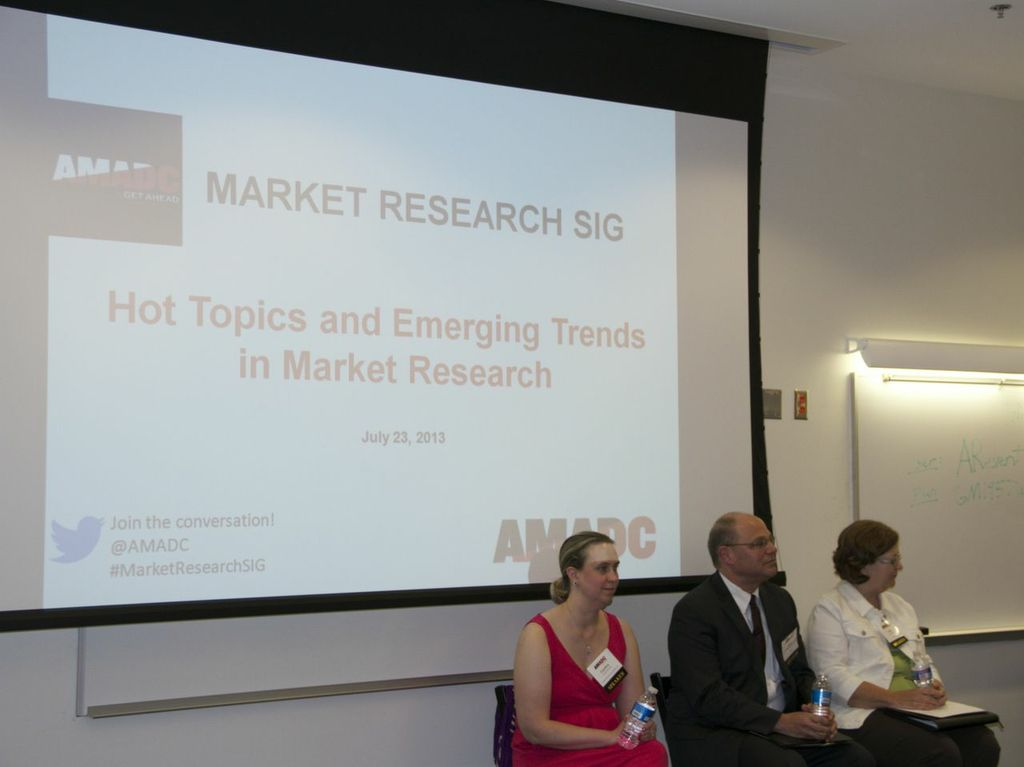 Panel Discussion: Hot Topics and Emerging Trends in Market Research